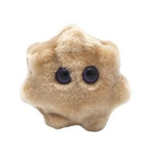 The SuperBugs Range Rotavirus