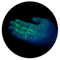 UV GERM Cuddle Bug - green hand glow